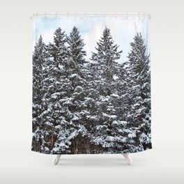 Evergreens Dusted in Snow Shower Curtain
