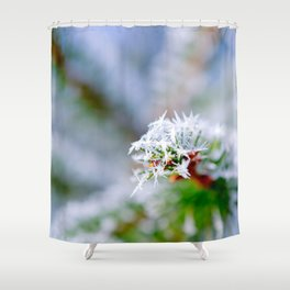 Bitter Cold, Fir Tree In Cool Winter Shower Curtain