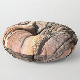 Eucalyptus tree bark texture Floor Pillow