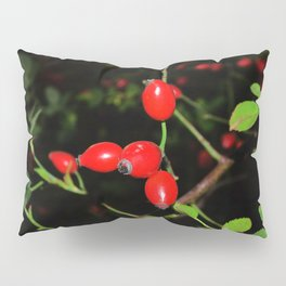 Rose hip 2 Pillow Sham