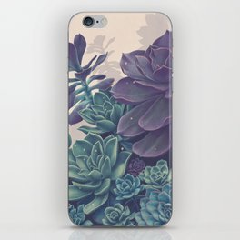 Magical Succulent Garden iPhone Skin