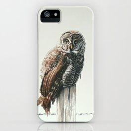 Great Gey Owl iPhone Case
