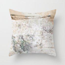 Winter Birch  Throw Pillow