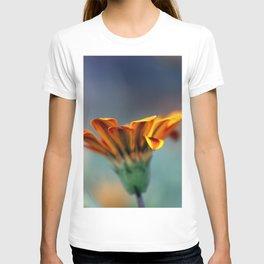 Gazania T-shirt