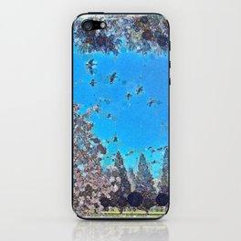 Geese Over Crystal SPrings iPhone Skin