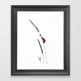 red ladybug and purple lavender Framed Art Print