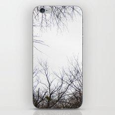 Tree Limbs iPhone & iPod Skin