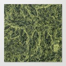 Plant Matter Pattern Canvas Print