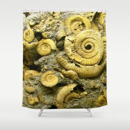 Fossils - Ammonite - Coiled Cephalopods  Shower Curtain