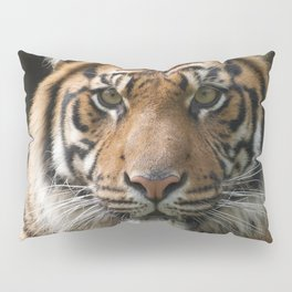 Look into my eyes by Teresa Thompson Pillow Sham
