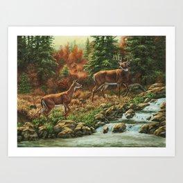 Whitetil Deer Doe & Buck by Waterfall Art Print
