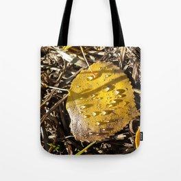 Crisp Autumn Morning Tote Bag