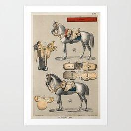 Vintage Horse Riding Gear  Art Print