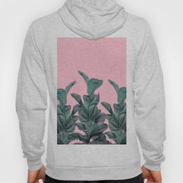 Rubber trees with pink Hoody
