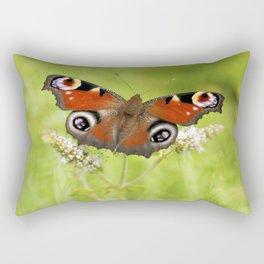 The European peacock butterfly Rectangular Pillow