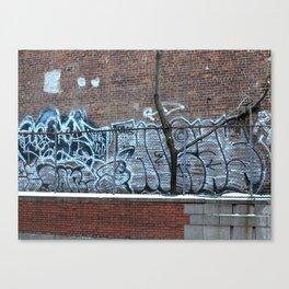 New York City Graffiti 2015 Canvas Print