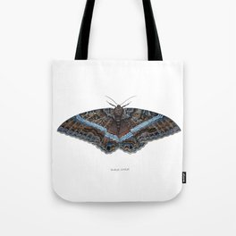 Black Witch Moth Tote Bag