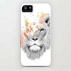 If I roar (The King Lion) iPhone (5, 5s) Slim Case