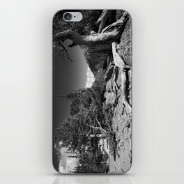 The Loch, Rocky Mountain national park iPhone Skin