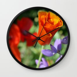 Orange Poppy Unfurling in Haines, Alaska by Mandy Ramsey Wall Clock