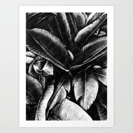 Dark Palm Leaves Art Print