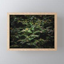 Refreshed Framed Mini Art Print