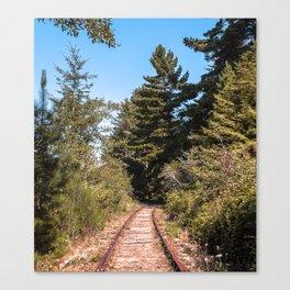 Loleta Train Track Canvas Print