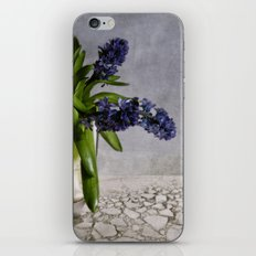 still life with hyacinth iPhone & iPod Skin