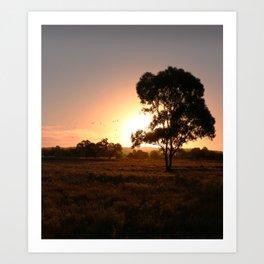 Evening Golden Landscape Art Print