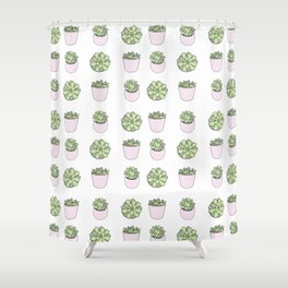 Green and pink suculents in flowerpots Shower Curtain