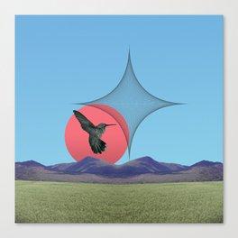 Colibri Canvas Print