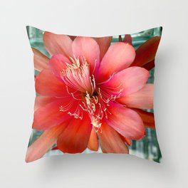 Flamingo Floaty Throw Pillow
