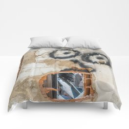 Wall-eyed Surprise Comforters