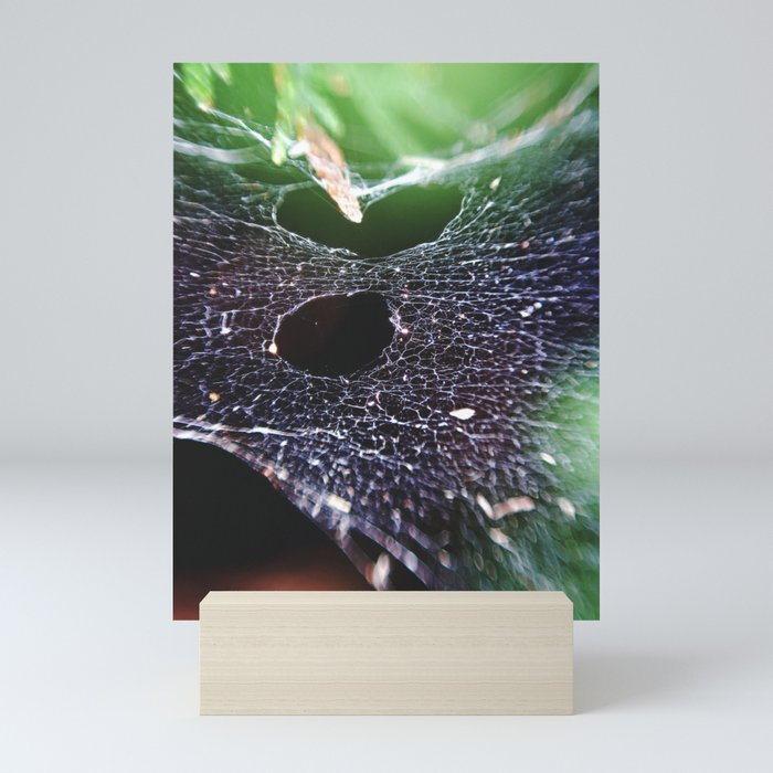 Holes In The Hammock. Spider Web, Nature Photography Mini Prints On Society6