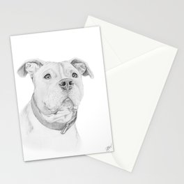 A Pit Bull :: Misunderstood Stationery Cards