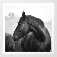 Black & White Horse Photograph ~ Cades Cove Riding Stables Tennessee Art Print