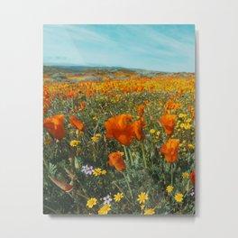California Wildflower Poppy Superbloom Metal Print