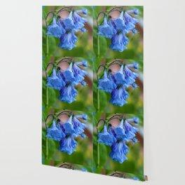 Pop of Blue Wallpaper
