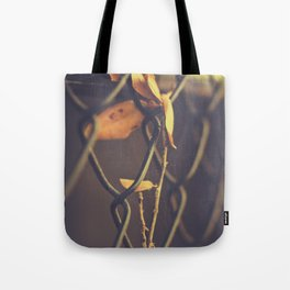 Never say there is nothing beautiful in the world anymore. Tote Bag