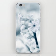 Blue Hyacinth iPhone & iPod Skin