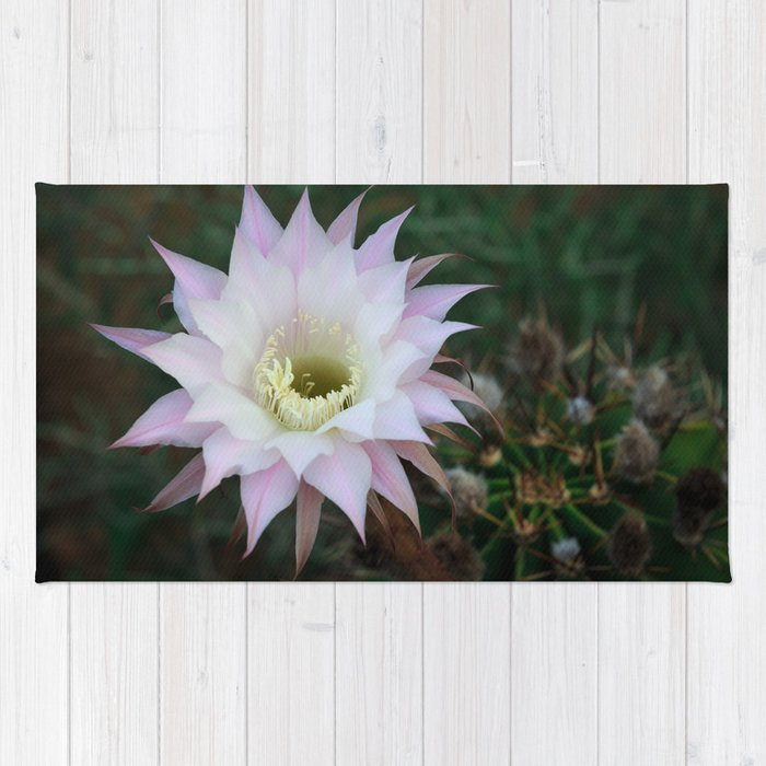 Pale White Pink Cactus Flower Rug By Koroleva Society6
