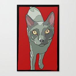 The Curious Cat Canvas Print