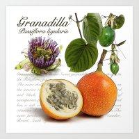 Granadilla Art Print
