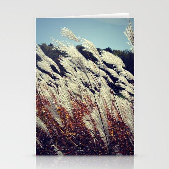 Transparent Stationery Cards