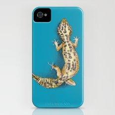 Leopard Gecko iPhone (4, 4s) Slim Case