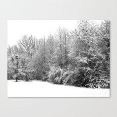 Snow 1 Canvas Print