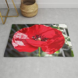 Single Red Poppy Flower  Rug