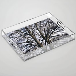 Stained Glass Tree Acrylic Tray