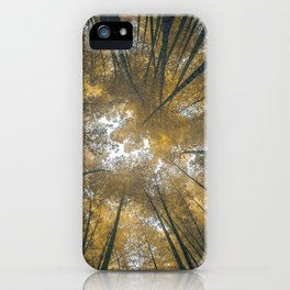 Bamboo Temple iPhone Case