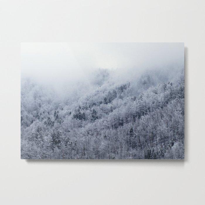 Winter Cometh Metal Print